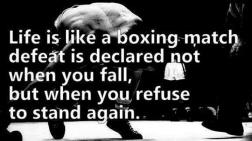 Hard Core boxer