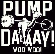 pump-day