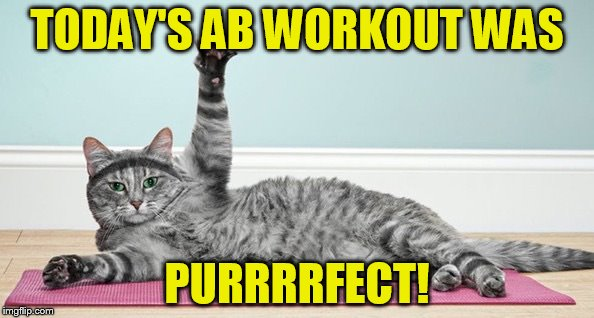 purfect-abs